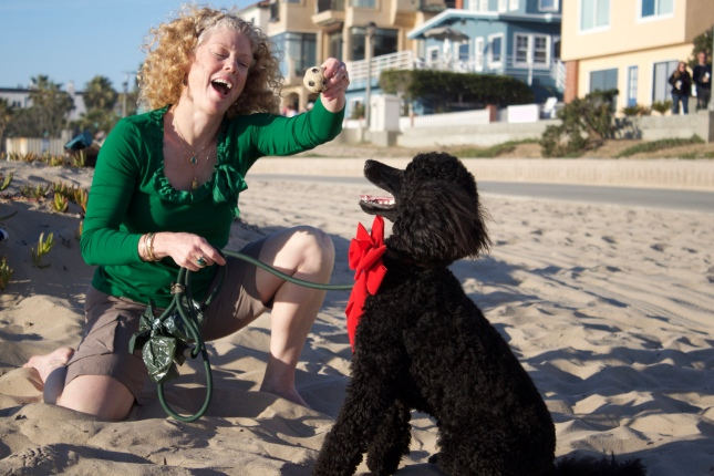 Merry Christmas from Redondo Beach. One happy Poodle....pure bliss.