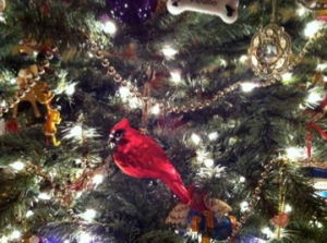 My red cardinal glass ornament always makes me happy!