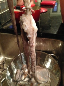 Octavius the Octopus moments before he gets chopped up.